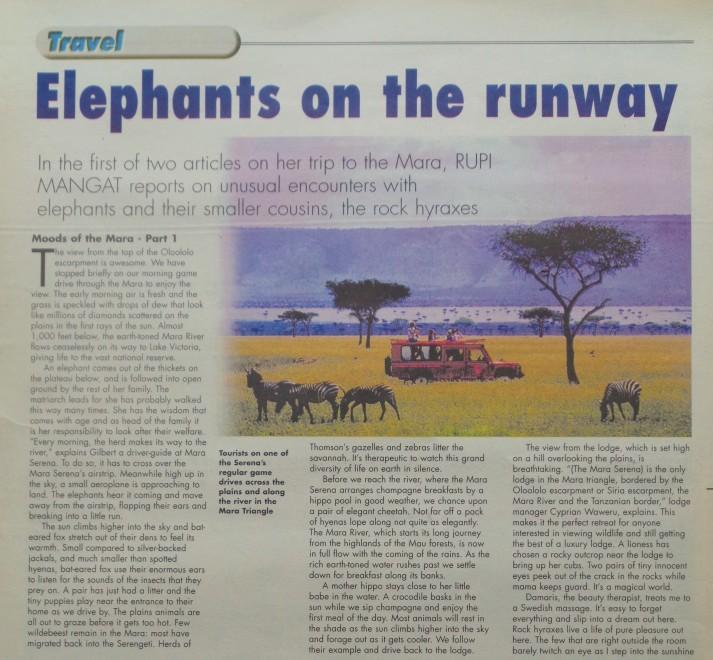 Elephants on the runway in Maasai Mara